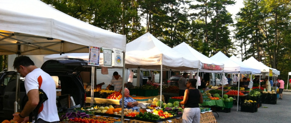 Shoppers at a community farmers' market with a row of neatly arranged canopies and produce.